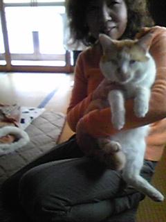 でか猫だぁ〜