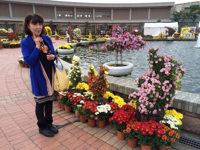 武生の菊人形に行って来ました 。